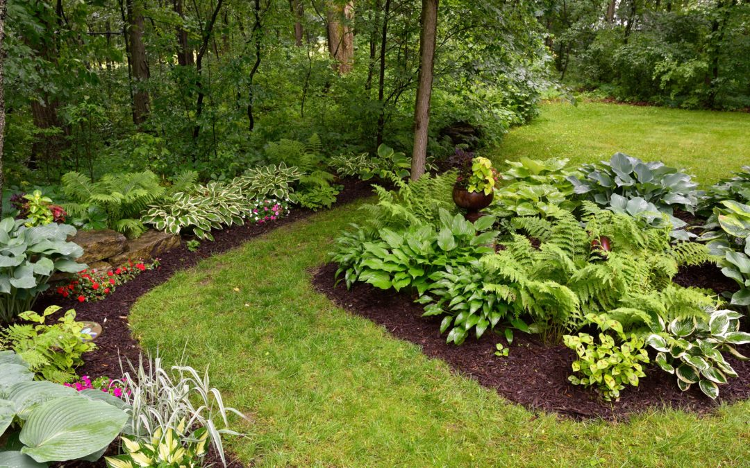 Woodbridge Ct Spring Yard Cleanups, Better Lawns And Gardens Ansonia Ct